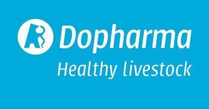 Bild von Dophamec Equi 18,7 mg/g