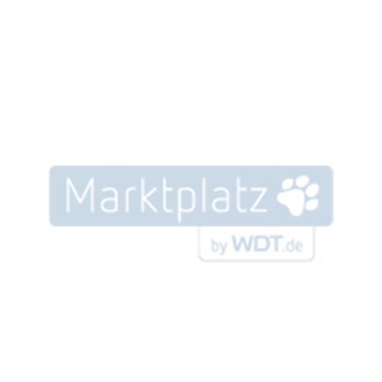 Bild von Royal Canin German Shepherd